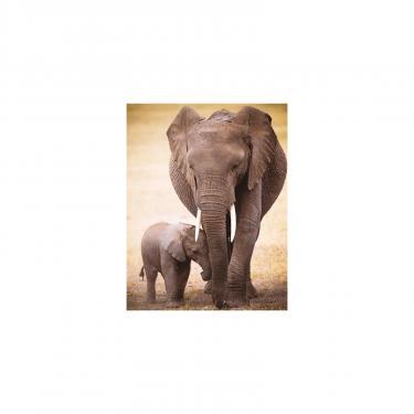 Пазл Eurographics Слониха и слоненок 100 элементов Фото 1