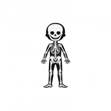 Пазл Janod Тело человека Фото 2